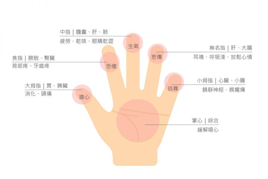 手部的穴道非常多,經常按摩雙手,可以促進身體健康,也能保持情緒穩定喔!