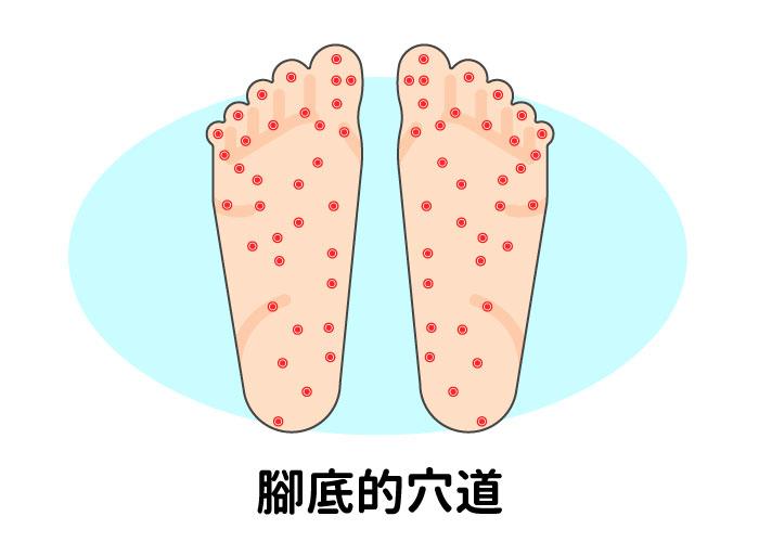 腳底的穴道眾多,連結溝通著我們的身體大小部位,適當的按摩腳底,不僅可以促進血液循環,也可以藉由按摩的感受來了解身體的狀況。
